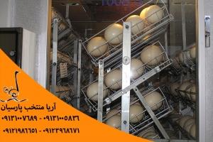 تخم شترمرغ تولیدی آریا منتخب