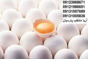فروش تخم مرغ صادراتي -بوقلمون بيوتي , بوقلمون_گوشتي , بوقلمون گوشتي , خريد بوقلمون BUT6 , بوقلمون بومي , بوقلمون بيوتي , بوقلمون صنعتي , بوقلمون ارگانيك , بوقلمون سفيد , بوقلمون بيوتي 6 , بوقلمون بيوتي فوق سنگين , بوقلمون محلي شمال , خريد بوقلمون گوشتي در ورامين , فروش بوقلمون فرانسوي , فروش جوجه بوقلمون يكماهه در ورامين , بوقلمون بي يو تي در اروميه , قيمت جوجه بوقلمون بي يو تي , قيمت جوجه بوقلمون پانزده روزه , قيمت جوجه بوقلمون 15 روزه , حمل بوقلمون بيوتي زنده در ورامين , بوقلمون گوشتي در ورامين , خريد و فروش بوقلمون در ورامين, فروش بوقلمون گوشتي در ورامين , بوقلمون بيوتي 6 , خريدار جوجه بوقلمون but , جوجه يكماهه بوقلمون در ورامين , پرورش بوقلمون, جوجه بوقلمون , بوقلمون بيوتي 6 فوق سنگين, بوقلمون بيوتي 6 , قيمت جوجه بوقلمون بي يو تي , پرورش بوقلمون , جوجه بوقلمون, بوقلمون برنز , بوقلمون برنز آمريكايي , بوقلمون برنز انگليسي , بوقلمون برنز انگليس , بوقلمون برنز آمريكا , بوقلمون برنز كانادا , بوقلمون برنز ماسوله , بوقلمون برنز انگليس يكماهه , بوقلمون برنز فرانسوي , بوقلمون برنزآمريكا , بوقلمون برنز انگليسي 35 روزه , بوقلمون برنزه , بوقلمون برنز , مرغ , مرغ بومي , مرغ بومي گلپايگاني , مرغ بومي تخمگذار , تخمگذار , مرغ تخمگذار , جوجه مرغ بومي , جوجه تخمگذار بومي , مرغ بومي 5 ماهه , مرغ 5 ماهه , مرغ 5 ماهه بومي گلپايگان , مرغ بومي گلپايگان اصل , مرغ لوهمن قهوه , مرغ لومهن , مرغ بومي بلك , مرغ بومي گوشتي , مرغ بومي گلپايگاني , مرغ ال اس اس, مرغ پولت , نيمچه مرغ بومي , مرغ بومي محلي , بلدرچين , بلك استار , پليموت راك , مرغ بومي بلك , مرغ بومي بلك استار , مرغ بلك استار , مرغ , مرغ بومي تخمگذار , مرغ بومي محلي , نيمچه مرغ , نيمچه , نيمچه دو ماهه بلك , مرغ لوهمن قهوه , مرغ لوهمن , مرغ لوهمن دم طلايي , شترمرغ , شترمرغ پرواري , شترمرغ هچري يكماهه دوماهه , شترمرغ مولد , شترمرغ پرواري , شترمرغ استراليايي , شترمرغ ايران , شترمرغ آفريقايي , شترمرغ تربت حيدريه , شترمرغ اصفهان , شترمرغ يكماهه , شترمرغ روغن , روغن شترمرغ , شترمرغ زرينشهر , شترمرغ هچري , شترمرغ گيلان , شترمرغ گردن آبي , شترمرغ گوشتي , شترمرغ نر , شترمرغ ماده , شترمرغي , شترمرغ 45 روزه , شترمرغ من , شترمرغ دوماهه , شترمر